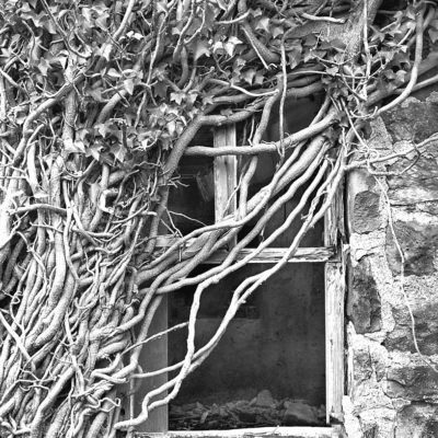 Ruined Farm Window