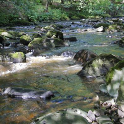 River Eden near Dolgellau