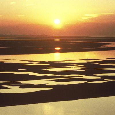 RiverDyfi Sunset