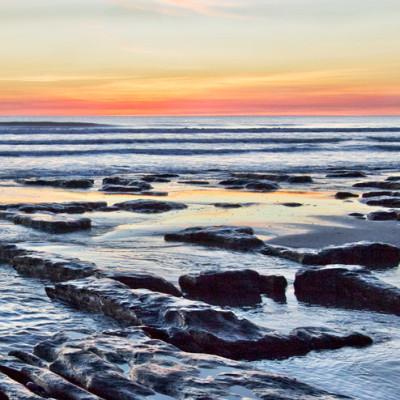 Ancient Peat Cardigan Bay
