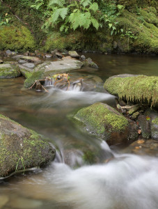 River Gorge in Snowdonia