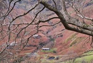 Bryn Hafod Mountain Hut